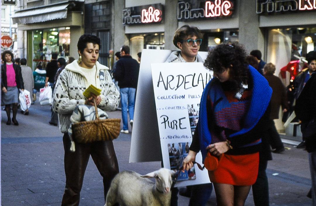 Ardelaine-Histoire-Laine-Communication-Ardeche