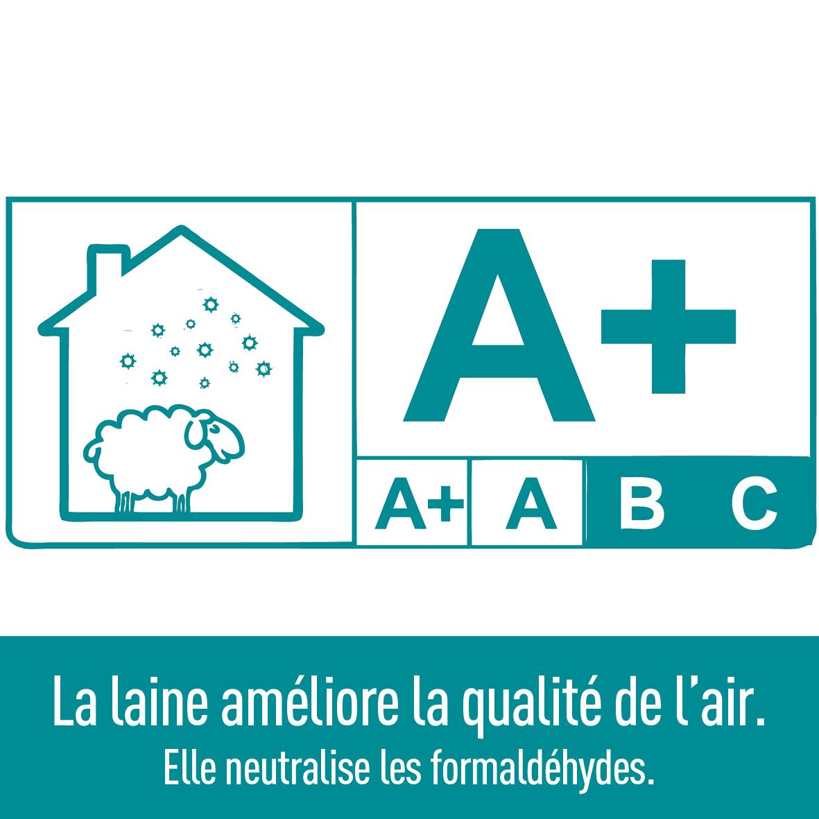 laine-purifie-air-neutralise-formaldehydes-plante-ardelaine