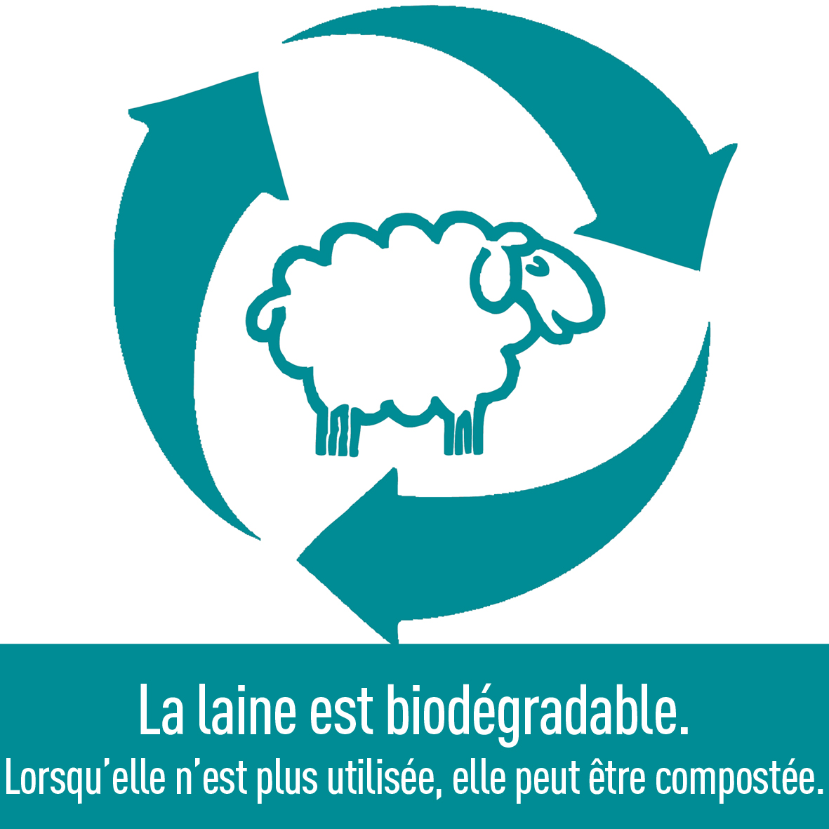 laine-qualité-biodégradable-recyclable-compostable-ardelaine